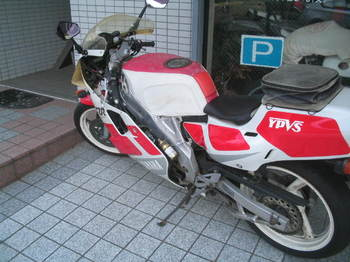 IMG_6586.JPG